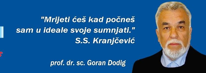 Goran Dodig
