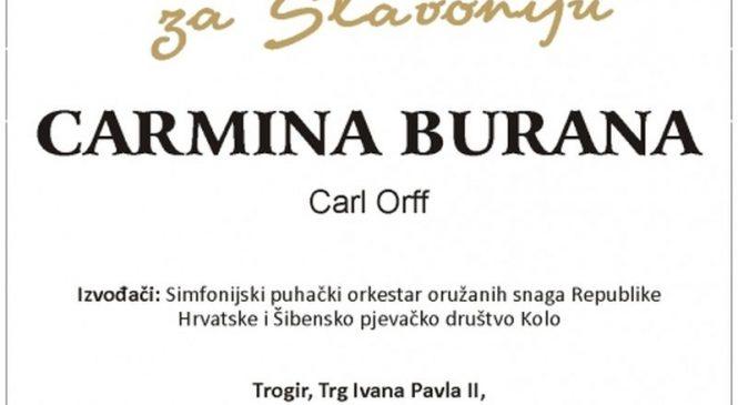 Humanitarni koncert za poplavljenu Slavoniju
